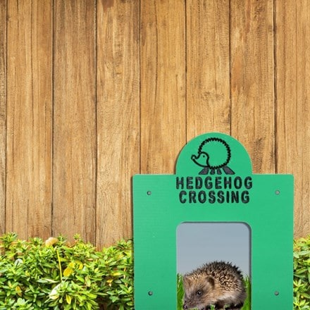 Hedgehog crossing - square tunnel