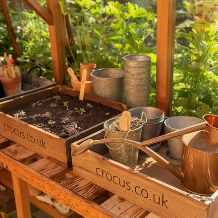 Wooden seed tray