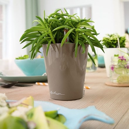 Lechuza Mini Deltini table planter