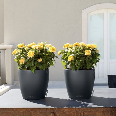 Lechuza Classico colour planter slate