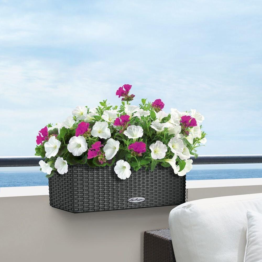 Lechuza Balconera cottage planter granite