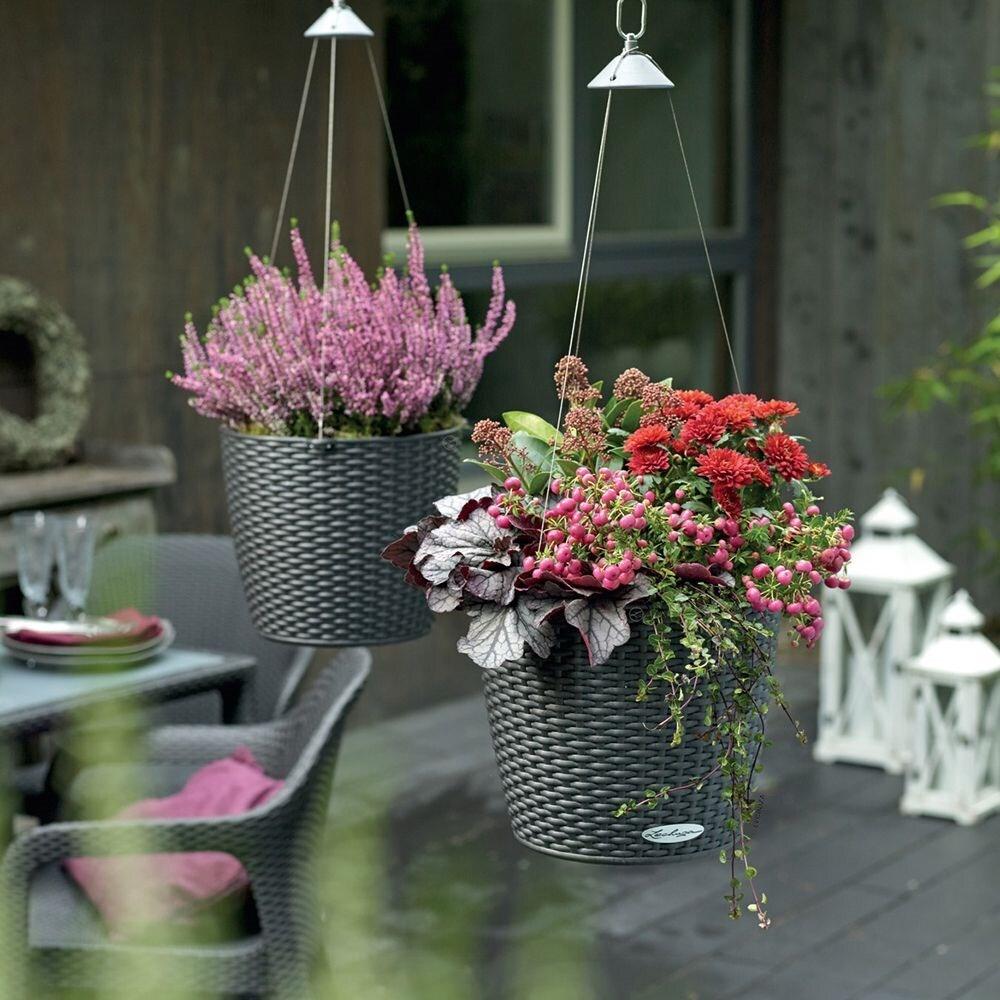 Lechuza Nido cottage hanging planter