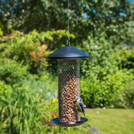 Stainless steel peanut feeder
