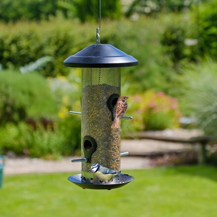Stainless steel seed feeder