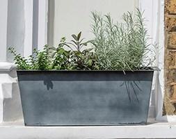 Plant trough - long