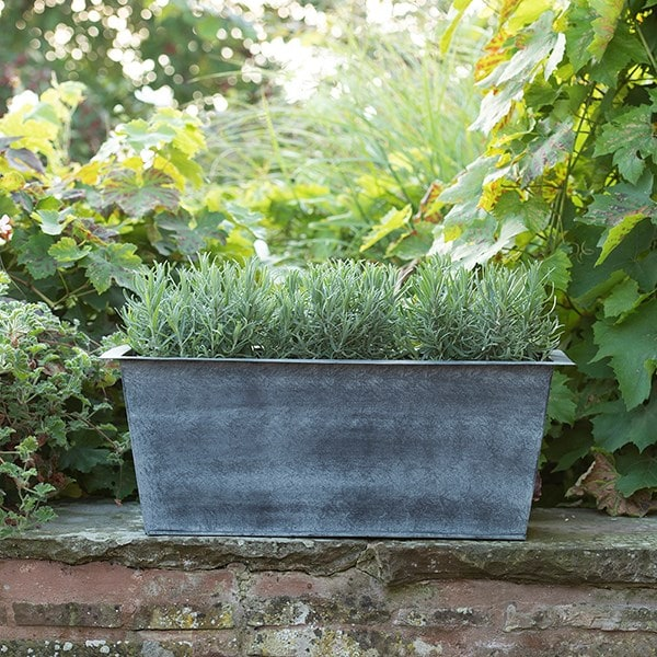 Plant trough - long
