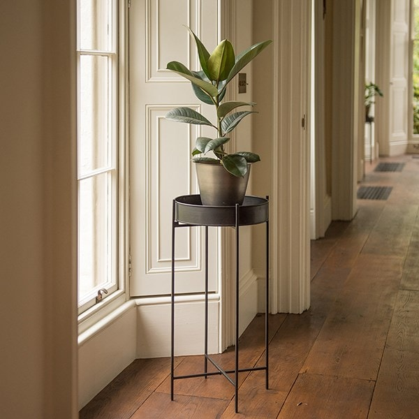 Plant tray and stand - tall