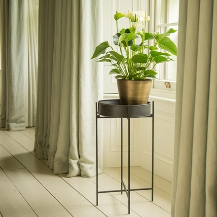 Plant tray and stand - short