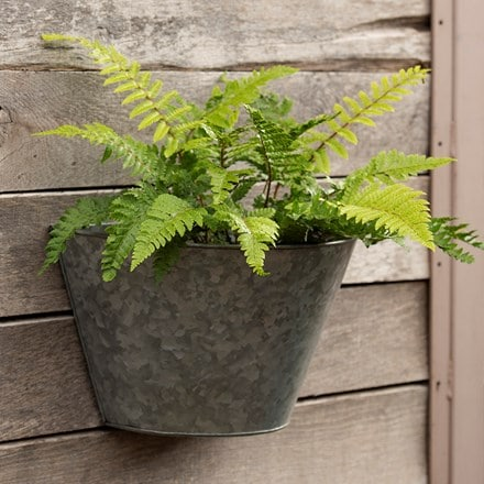Galvanised wall planter