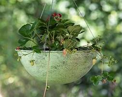 Hanging bowl - verdigris