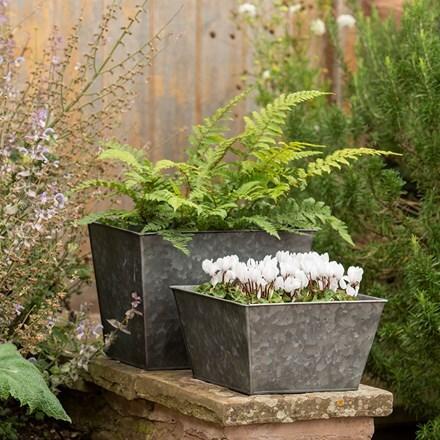 Dark galvanized square planter