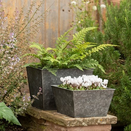 Dark galvanised square planter
