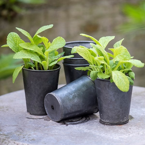 Set of six dark galvanised pots