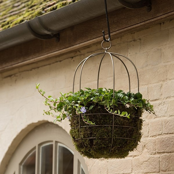 Hanging plant cage - wide
