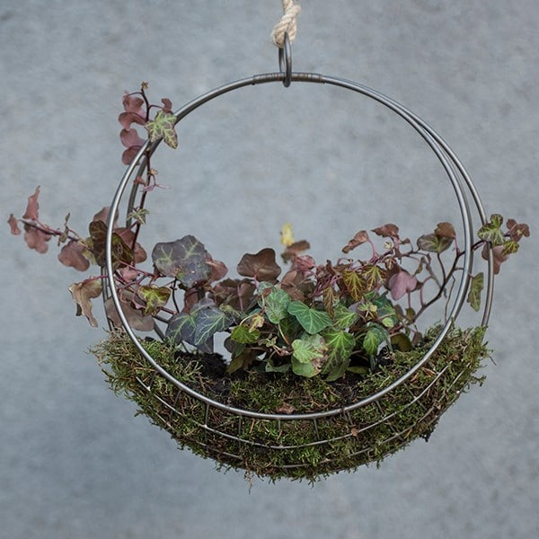 Hanging wreath basket - small