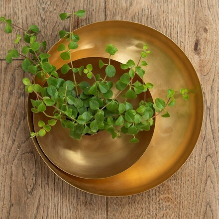 Round plant dish - brushed brass