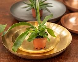 Round plant dish - brushed brass