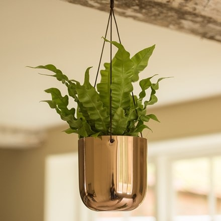 Hanging polished copper pot