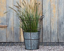 Planter and support basket