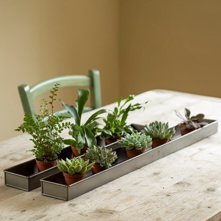 Zinc metal tray