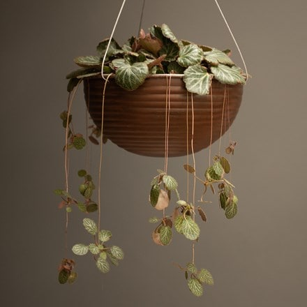 Hanging ribbed bowl