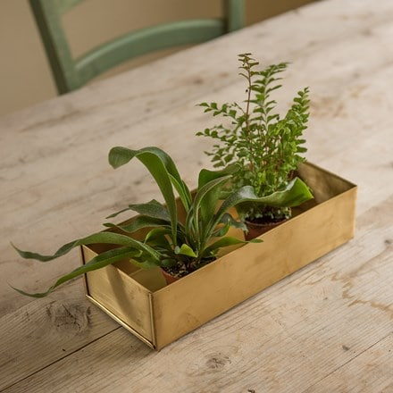 Brass seed tray