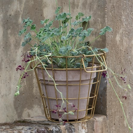 Brass pot basket