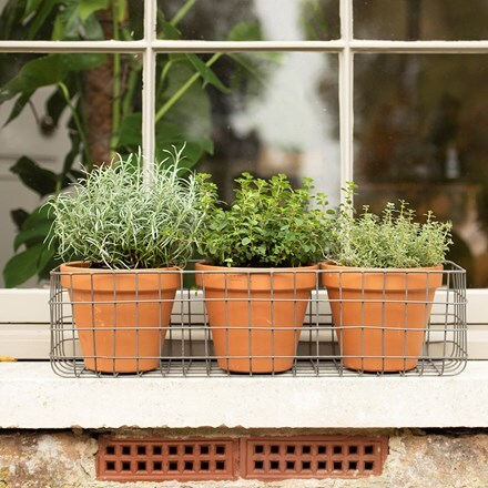Pot window basket