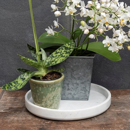 Marble indoor pot tray