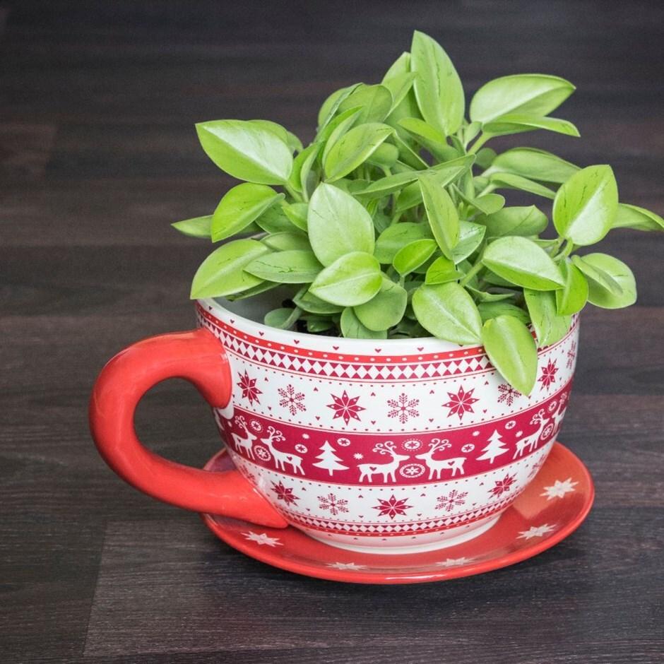 Nordic reindeer teacup - medium