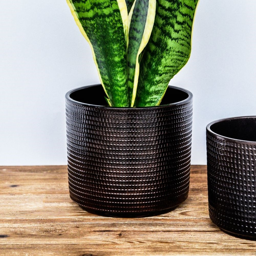 Embossed planter espresso