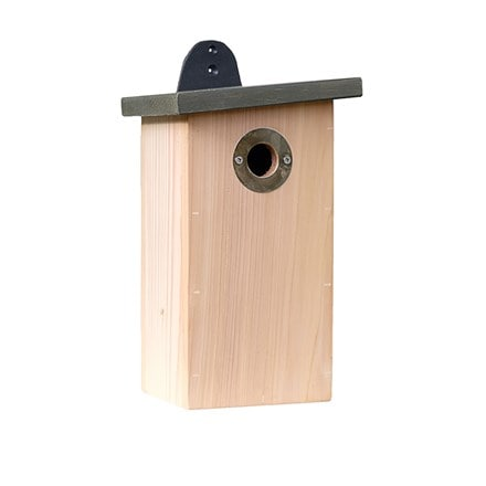 Predator resist nest box