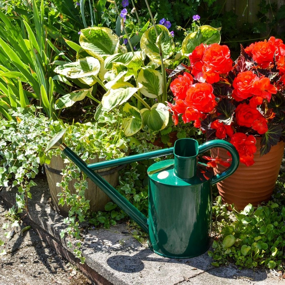 Haws traditional 8.8 litre watering can