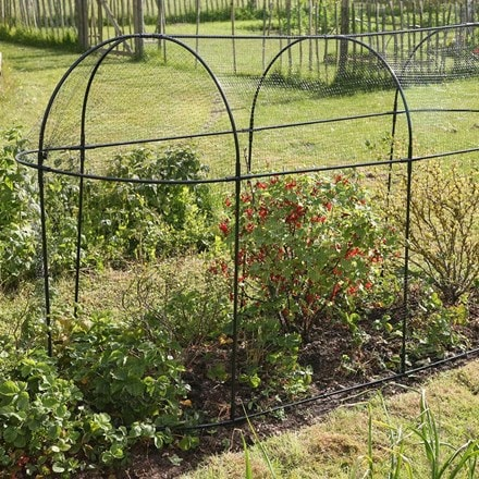 Steel long fruit cage