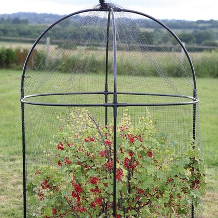 Steel round fruit cage