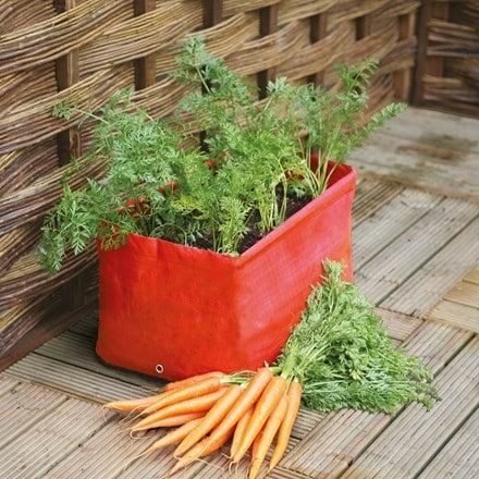 Carrot patio planter 2 pack