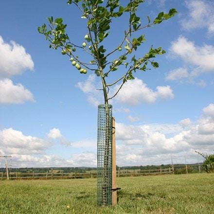 Flexi-mesh treeguard