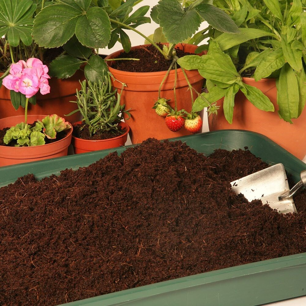Coir compost block