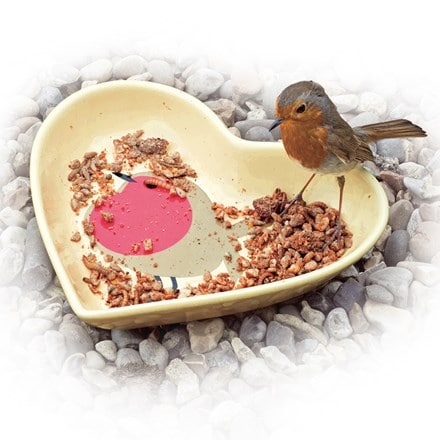 I love robins ceramic bird bath