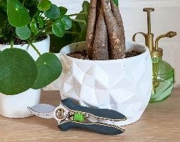 Burgon and Ball houseplant pruner