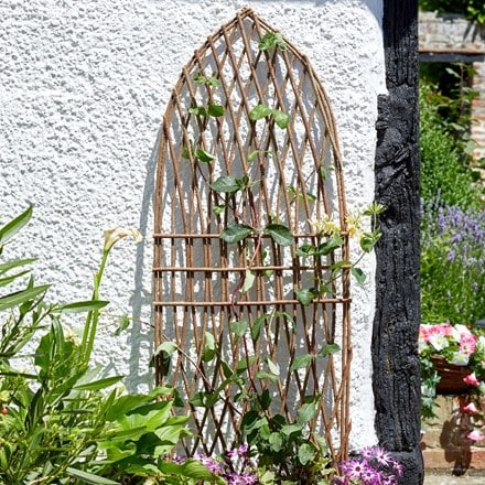 Minster willow trellis - gothic