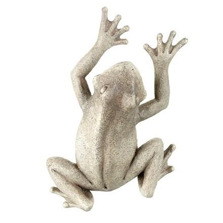Climbing frog