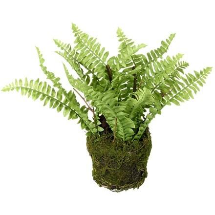 Artificial fern in soil