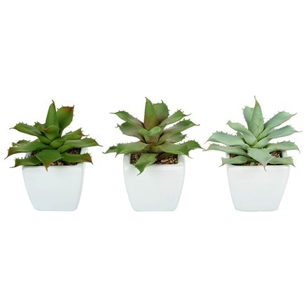 Artificial potted agave - set of three