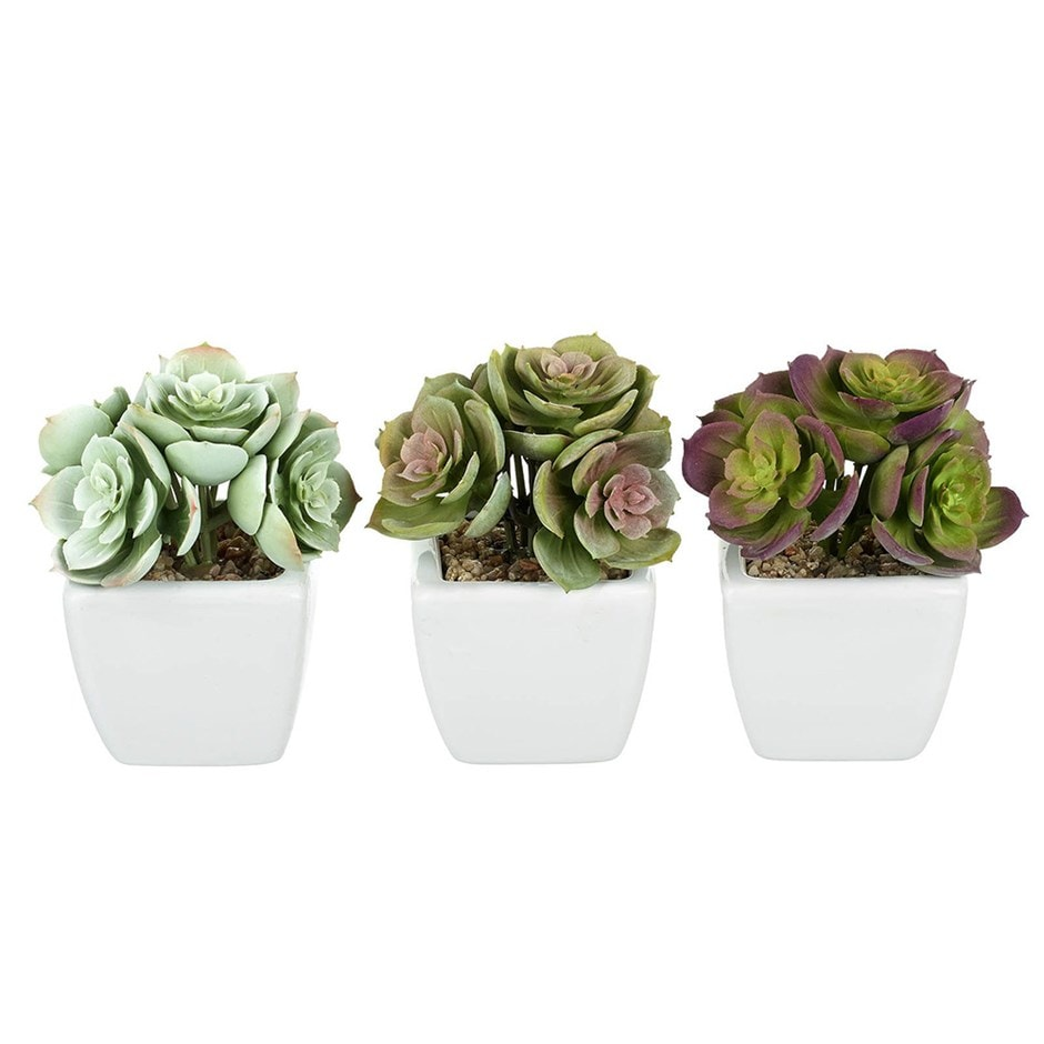 Artificial potted echeveria - set of three