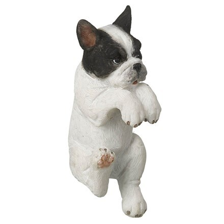 Pothanger - French bulldog