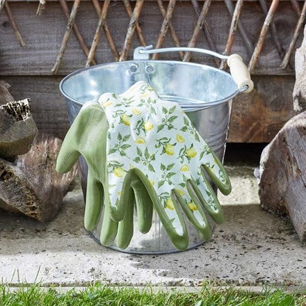 Sicilian lemon seed and weed gloves