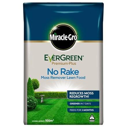 Miracle-gro evergreen premium plus no rake moss remover lawn food