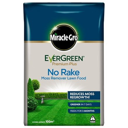 Miracle-gro evergreen premium plus no rake moss remover lawn food