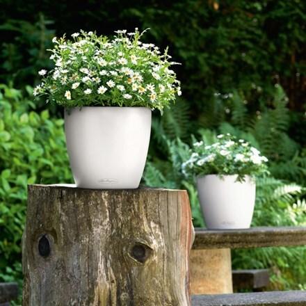 Lechuza Classico colour planter white